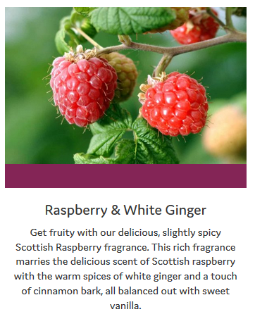Raspberry-White-Ginger-Info